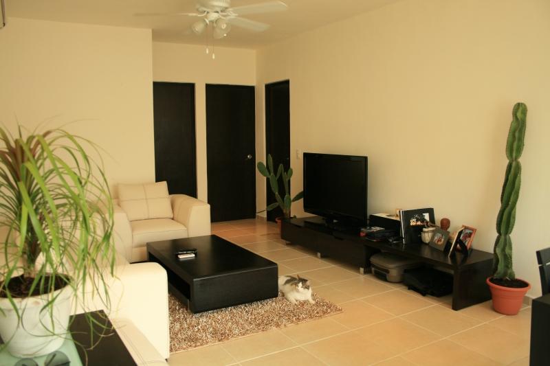 plantes anne bruno blot des fran ais expatri s au mexique. Black Bedroom Furniture Sets. Home Design Ideas