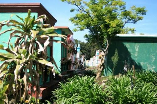 le cimetière: 2009, tendance vert!