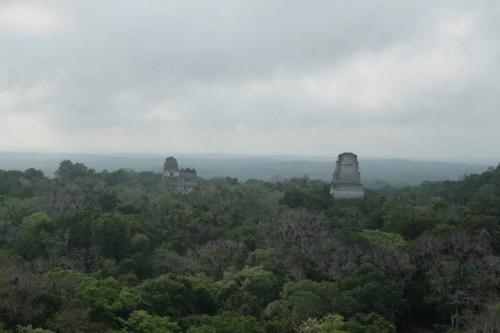 Tikal, vue depuis le temple 4